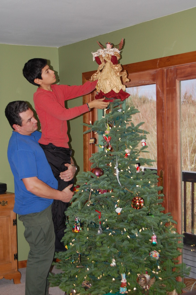 The Boys Decorate The Christmas Tree On The Banks Of